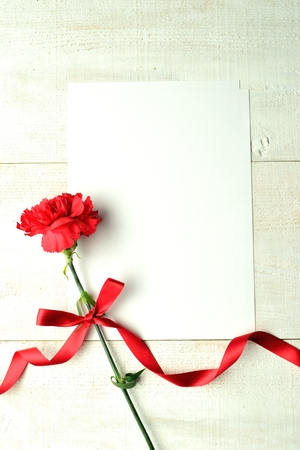 Red carnation with white writing paper