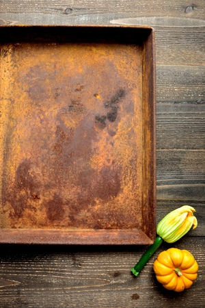 Flower of zucchini, pumpkin and rusted tray