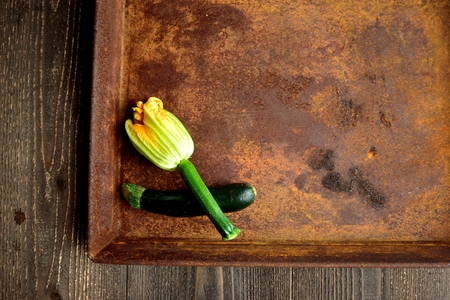 Flower of zucchini on the rusted tray