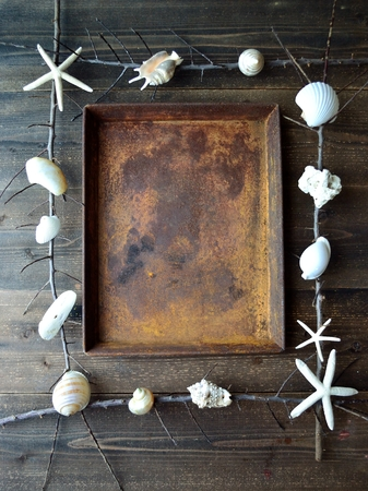 White sea shells with rusted tray.frame Stock fotó