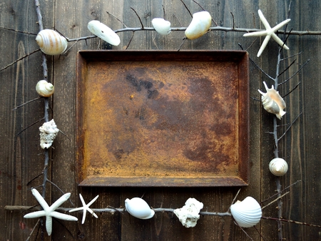 White sea shells with rusted tray.frame 版權商用圖片