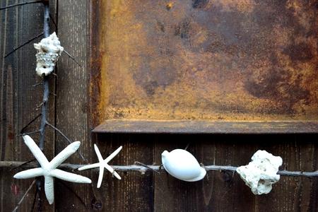 錆びた tray.frame と白い貝殻