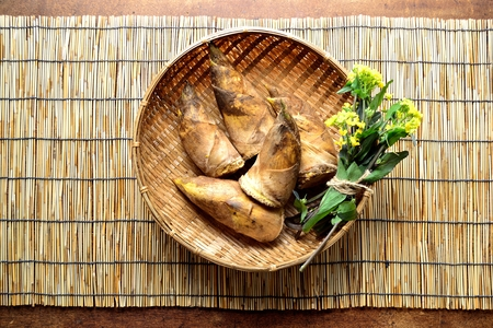 Bamboo shoots with blossoms on the basket. Japanese style blind background Imagens