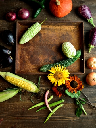 Summer vegetables with sunflower on a rusted tray 写真素材