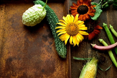 Summer vegetables with sunflower on a rusted tray Banco de Imagens
