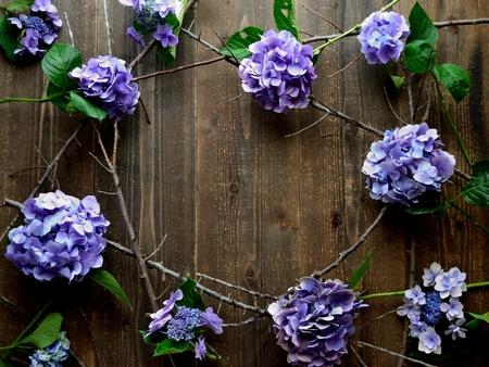 Purple hydrangeas frame.black wooden background Reklamní fotografie