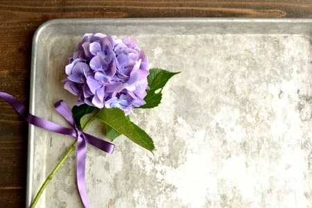 Purple hydrangea on a silver tray