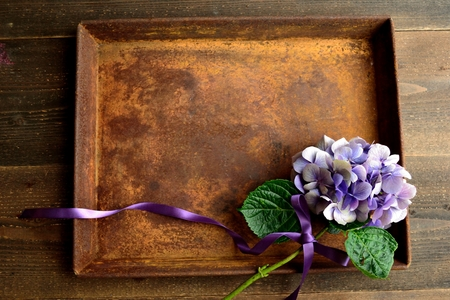 Purple hydrangea on a rusted tray Reklamní fotografie