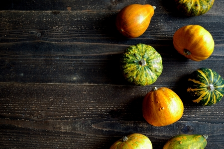 Colorful pumpkins on the black wooden background