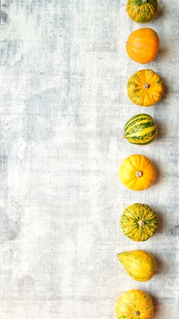 Colorful pumpkins on the white background Stock Photo - 112697357
