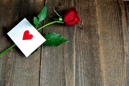 A single red rose with message card