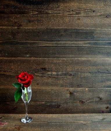A single red rose with champagne glass