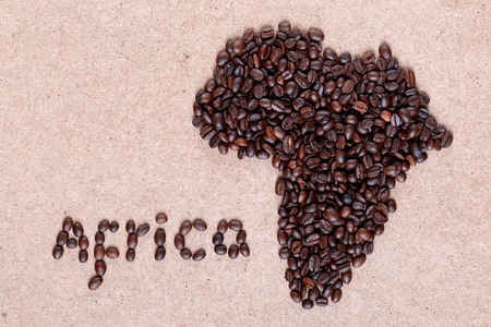 Bunch of fresh roasted coffee beans forming African continent on plywood surface, shot close up