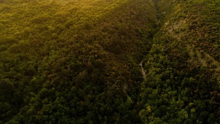 A picturesque view of a forest, at sunset, shot from above. Standard-Bild