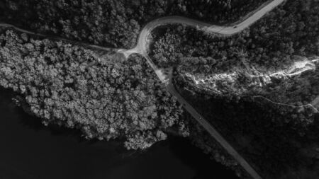 Two path intersecting in the middle of beautiful forest, shot from above, black and white. Stockfoto