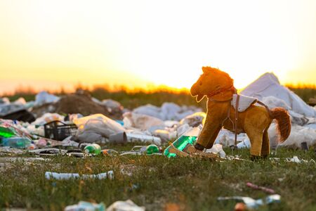 A pile of garbage in the middle of a meadow and a small horse toy, during sunset. Banque d'images