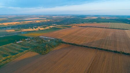 Golden wheat fields, lines of green trees and a village all shot from above.
