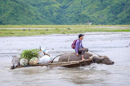Un hombre filipino no identificado monta un carruaje de vacas al otro lado del río cerca de la montaña Pinatubo el 27 de agosto de 2017 en Santa Juliana, Capas, Luzón Central, Filipinas3