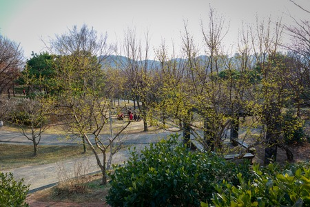 Gimhae, South Korea - March 10, 2018 : Walking mountains trail, back side of Gimhae National Museum