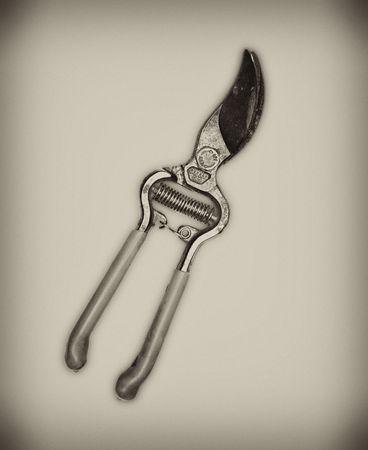 malandros: Resorte tijeras de jard�n. A menudo utilizado por los matones de la pel�cula para realizar recortes creativos. Foto de archivo