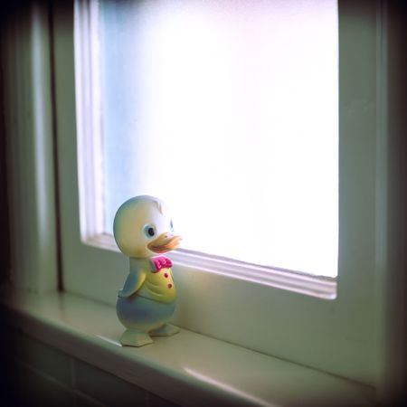distraction: Rubber Duck, most often used as a distraction to help the hygeine challenged achieve clenliness. Stock Photo
