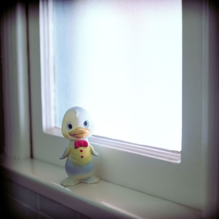 Rubber Duck, most often used as a distraction to help the hygeine challenged achieve clenliness. Archivio Fotografico