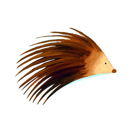 abstract porcupine Stock Photo