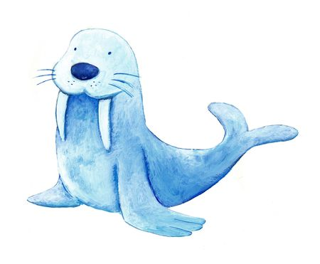 blue baby sea lion Stock Photo - 4815558