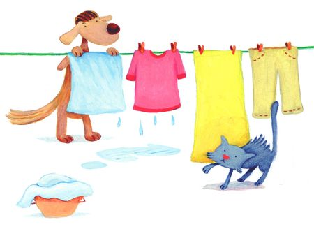 dog is doing laundry while a cat is sneaking up Stock Photo - 4815542