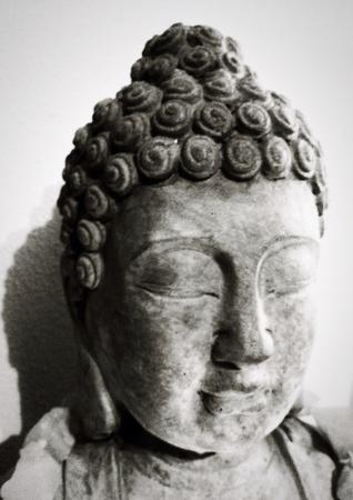 cabeza de buda: Cabeza de Buda