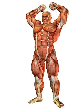 Rendering 3D di un atleta con forza muscolare pongono Archivio Fotografico