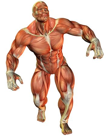 3D Rendering Muscle force an athlete