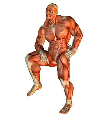 leg muscle fiber: 3D Rendering Muscle Body Builder standing on one leg Stock Photo