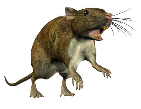 3D rendering of a jumping rat