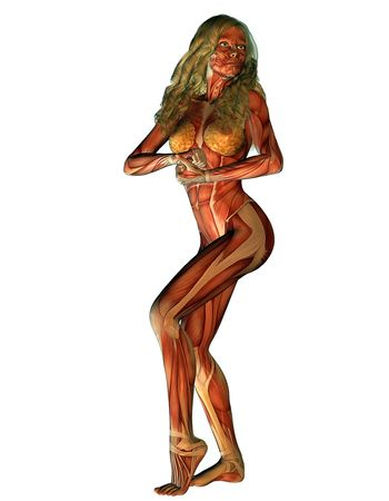 womanlike: 3d representation female structure of muscle in strength pose than illustration