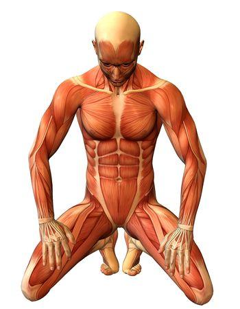 ひざまずく: 彼の膝の上の 3 D レンダリング研究筋肉マン