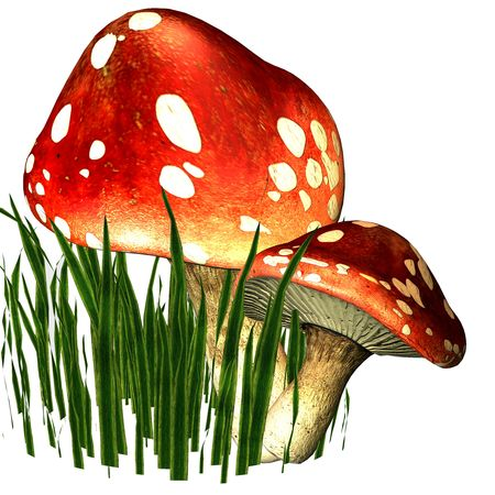 spores: 3d rendering of two fly mushrooms in the grass as illustration