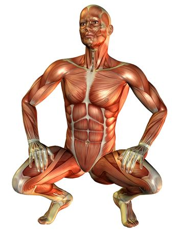 3D Rendering Study muscle man squatting Stock Photo - 7999641