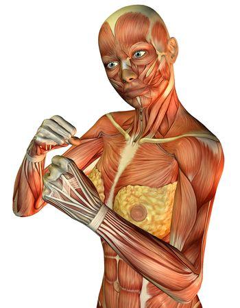3D Rendering von Muscle sportlich weibliche torso