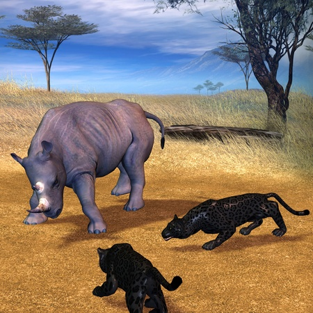serengeti: 3d rendering a combat scene between panthers and the rhinoceros in the Serengeti as illustration