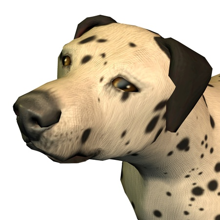 3d rendering  of a Dalmatian as illustration Stock Illustration - 8474630