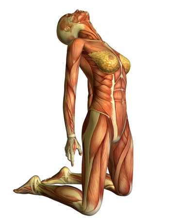 3D rendering muscle woman on her knees head back Stock Photo