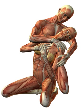 muskelaufbau: 3D Rendering-Muskel-Mann und Frau kniend