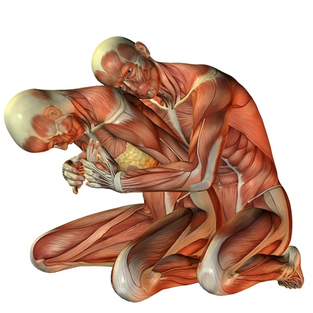 bone anatomy: 3D rendering muscle man hugging woman from behind