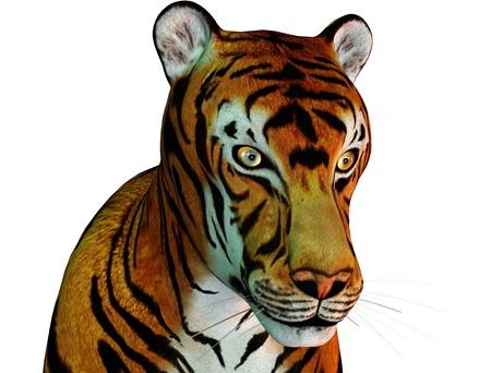 3D rendering of a cat head