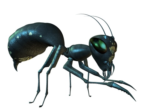 arthropoda: 3D Rendering Side view of an ant