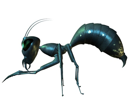 formicidae: 3D Renderingant standing on the side