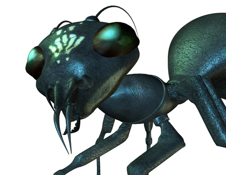 3D Rendering Detailed view of an ant head
