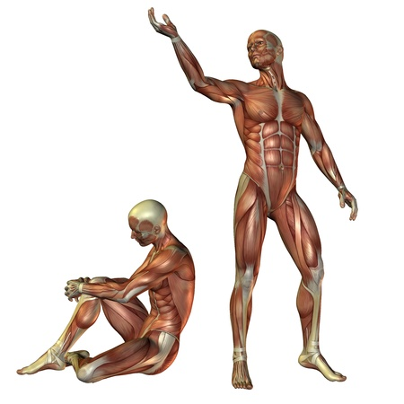 shirtless: 3D Rendering - Muscle man standing and sitting