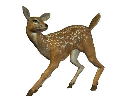 startled: 3D rendering of a startled deer